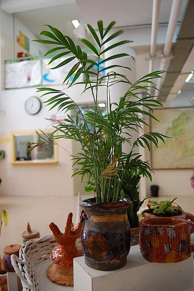 Imágenes del artículo: Exposición cerámica